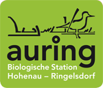 RJ_logo_auring